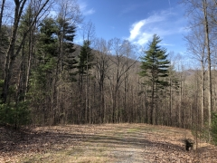 29 Acres Long range views